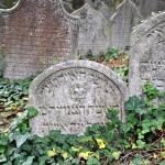 Třebíč - židovský hřbitov