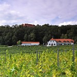 Sádek - hotel i hrad